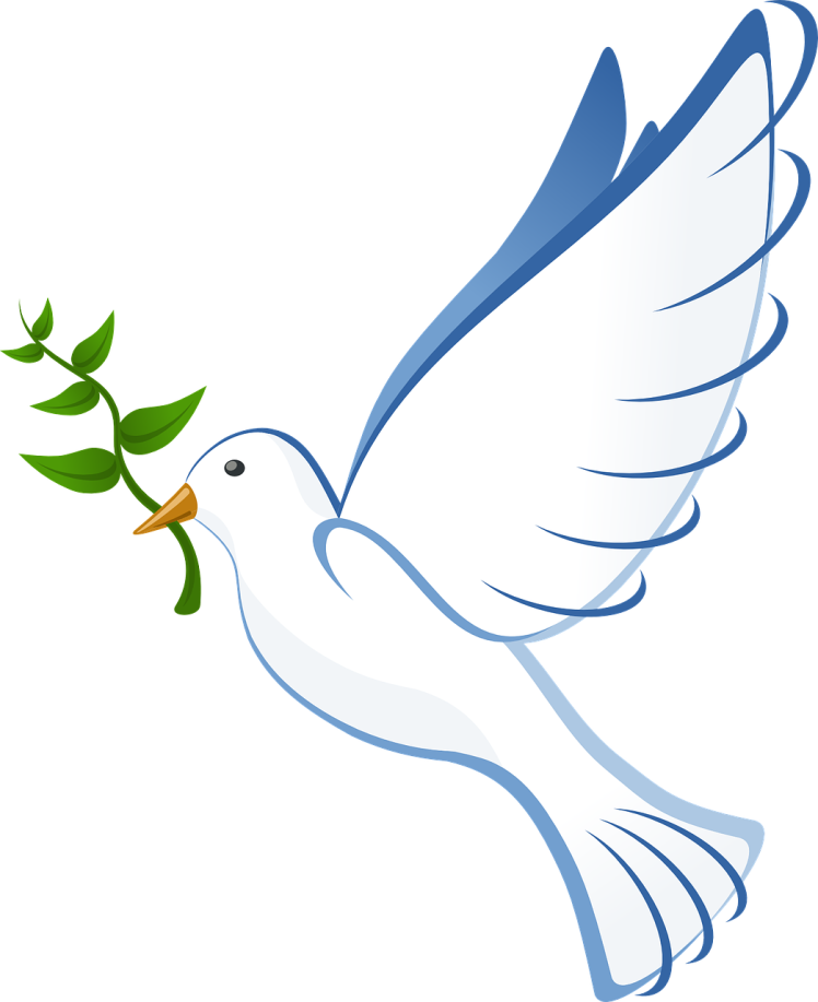 dove-41260_1280.png